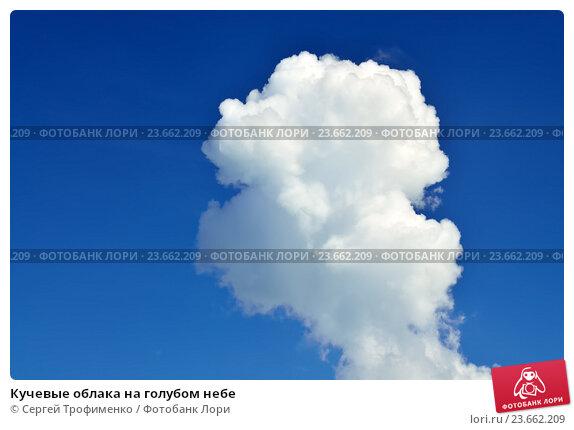 Купить «Кучевые облака на голубом небе», фото № 23662209, снято 1 июля 2016 г. (c) Сергей Трофименко / Фотобанк Лори
