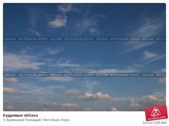Кудрявые облака, фото № 255049, снято 14 августа 2004 г. (c) Кравецкий Геннадий / Фотобанк Лори