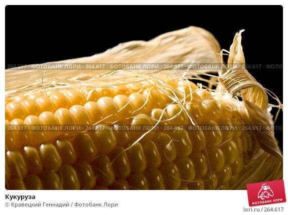 Кукуруза, фото № 264617, снято 9 октября 2005 г. (c) Кравецкий Геннадий / Фотобанк Лори