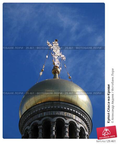Купол Спаса-на-Крови, фото № 29461, снято 1 июля 2005 г. (c) Александр Авдеев / Фотобанк Лори