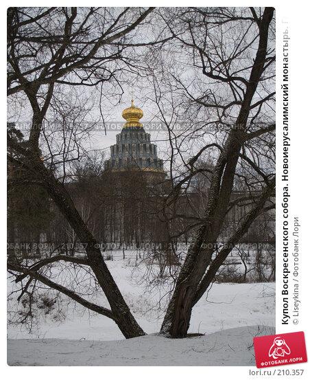 Купол Воскресенского собора. Новоиерусалимский монастырь. Город Истра, фото № 210357, снято 24 февраля 2008 г. (c) Liseykina / Фотобанк Лори