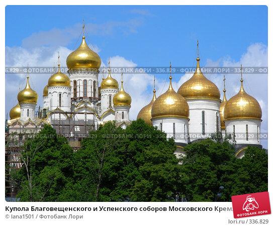 Купола Благовещенского и Успенского соборов Московского Кремля, эксклюзивное фото № 336829, снято 30 мая 2008 г. (c) lana1501 / Фотобанк Лори