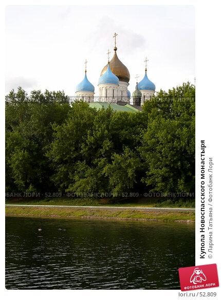 Купола Новоспасского монастыря, фото № 52809, снято 7 июня 2007 г. (c) Ларина Татьяна / Фотобанк Лори