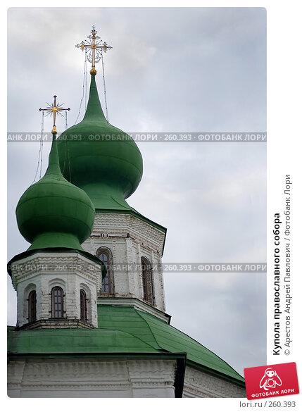 Купола православного собора, фото № 260393, снято 9 марта 2008 г. (c) Арестов Андрей Павлович / Фотобанк Лори
