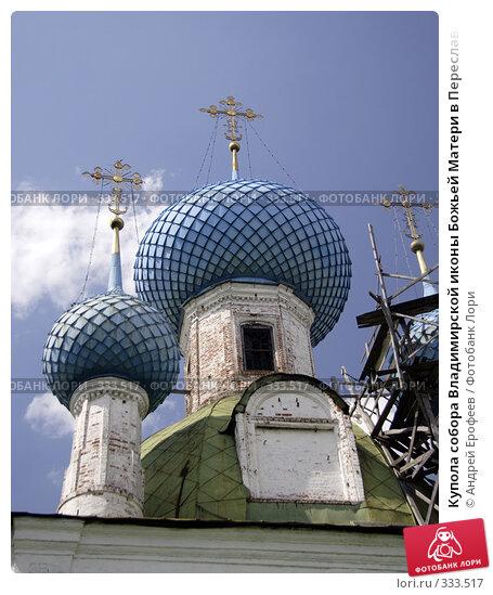 Купола собора Владимирской иконы Божьей Матери в Переславле-Залесском, фото № 333517, снято 21 июня 2008 г. (c) Андрей Ерофеев / Фотобанк Лори