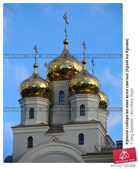 Купола собора во имя всех святых (Храм на Крови), фото № 129609, снято 7 июня 2005 г. (c) Serg Zastavkin / Фотобанк Лори