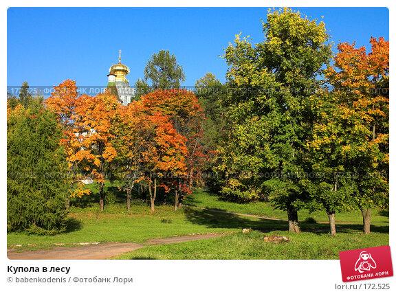 Купить «Купола в лесу», фото № 172525, снято 24 сентября 2006 г. (c) Бабенко Денис Юрьевич / Фотобанк Лори