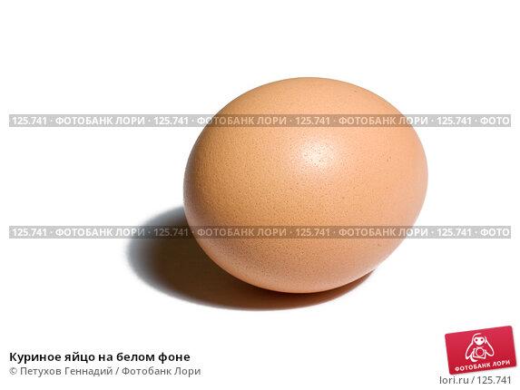 Куриное яйцо на белом фоне, фото № 125741, снято 13 ноября 2007 г. (c) Петухов Геннадий / Фотобанк Лори