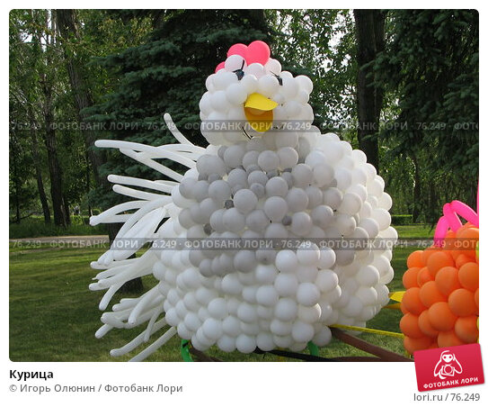 Курица, фото № 76249, снято 25 июня 2005 г. (c) Игорь Олюнин / Фотобанк Лори