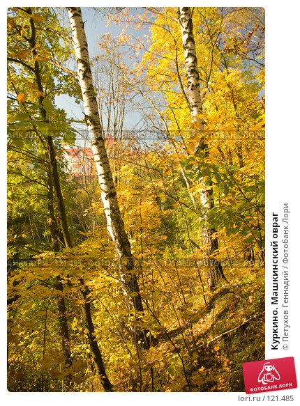 Куркино. Машкинский овраг, фото № 121485, снято 22 сентября 2007 г. (c) Петухов Геннадий / Фотобанк Лори