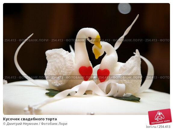 Кусочек свадебного торта, эксклюзивное фото № 254413, снято 20 ноября 2004 г. (c) Дмитрий Неумоин / Фотобанк Лори