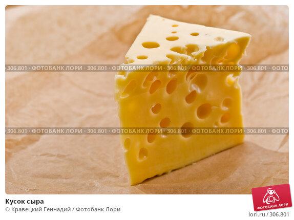 Купить «Кусок сыра», фото № 306801, снято 20 сентября 2005 г. (c) Кравецкий Геннадий / Фотобанк Лори