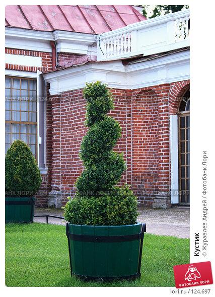 Кустик, эксклюзивное фото № 124697, снято 23 июля 2007 г. (c) Журавлев Андрей / Фотобанк Лори