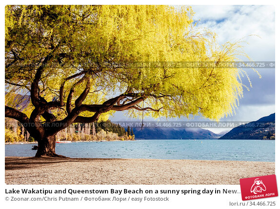 Lake Wakatipu and Queenstown Bay Beach on a sunny spring day in New... Стоковое фото, фотограф Zoonar.com/Chris Putnam / easy Fotostock / Фотобанк Лори