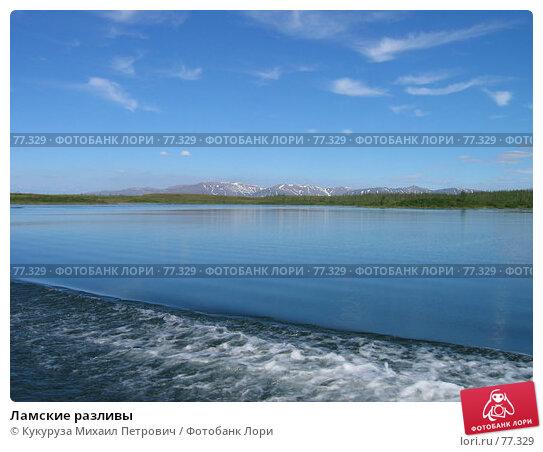 Ламские разливы, фото № 77329, снято 7 июля 2006 г. (c) Кукуруза Михаил Петрович / Фотобанк Лори