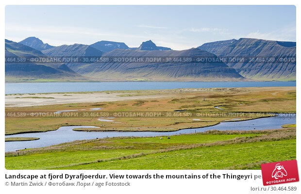 Landscape at fjord Dyrafjoerdur. View towards the mountains of the Thingeyri peninsula. The remote Westfjords (Vestfirdir) in north west Iceland. Europe, Scandinavia, Iceland. Стоковое фото, фотограф Martin Zwick / age Fotostock / Фотобанк Лори