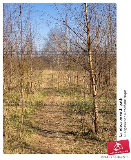 Landscape with path. Стоковое фото, фотограф Argument / Фотобанк Лори
