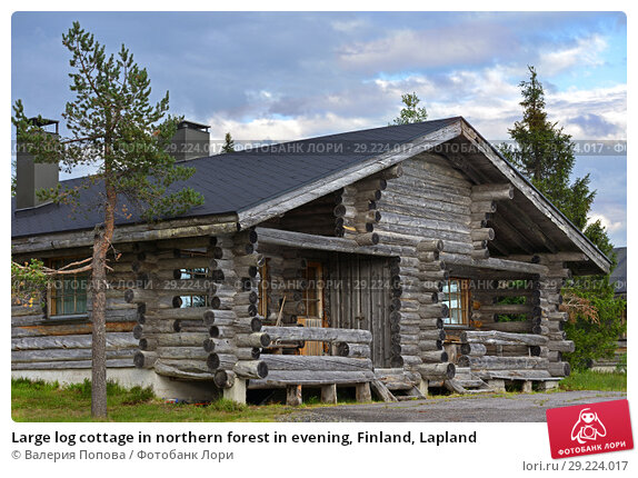 Купить «Large log cottage in northern forest in evening, Finland, Lapland», фото № 29224017, снято 14 июля 2018 г. (c) Валерия Попова / Фотобанк Лори