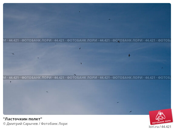 """""""Ласточкин полет"""", фото № 44421, снято 18 мая 2007 г. (c) Дмитрий Сарычев / Фотобанк Лори"""