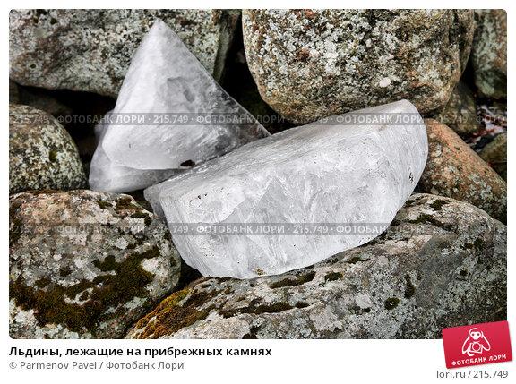 Льдины, лежащие на прибрежных камнях, фото № 215749, снято 13 февраля 2008 г. (c) Parmenov Pavel / Фотобанк Лори