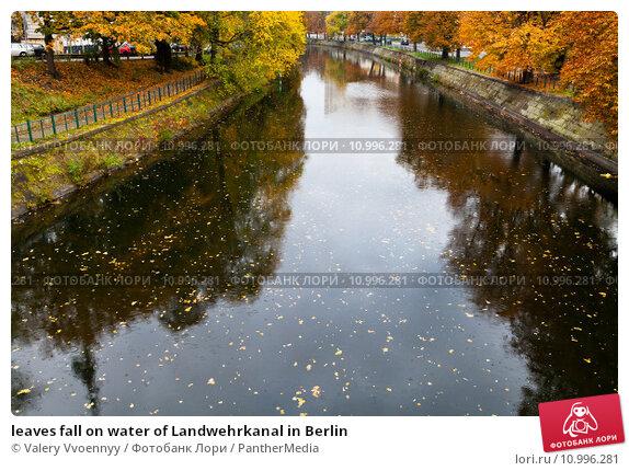 Купить «leaves fall on water of Landwehrkanal in Berlin», фото № 10996281, снято 19 апреля 2019 г. (c) PantherMedia / Фотобанк Лори