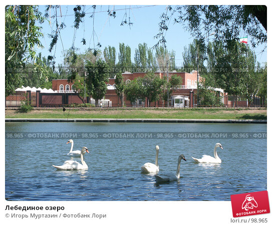 Лебединое озеро, фото № 98965, снято 27 мая 2003 г. (c) Игорь Муртазин / Фотобанк Лори