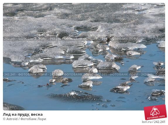 Лед на пруду, весна, фото № 242241, снято 2 апреля 2008 г. (c) Astroid / Фотобанк Лори