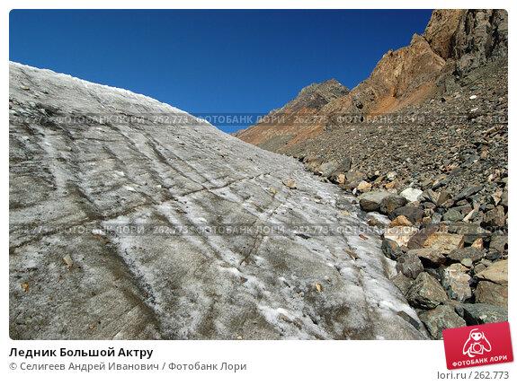 Купить «Ледник Большой Актру», фото № 262773, снято 27 августа 2007 г. (c) Селигеев Андрей Иванович / Фотобанк Лори