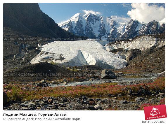 Ледник Маашей. Горный Алтай., фото № 279089, снято 13 июля 2006 г. (c) Селигеев Андрей Иванович / Фотобанк Лори