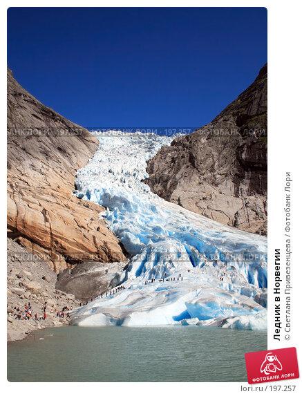 Ледник в Норвегии, фото № 197257, снято 28 июля 2017 г. (c) Светлана Привезенцева / Фотобанк Лори