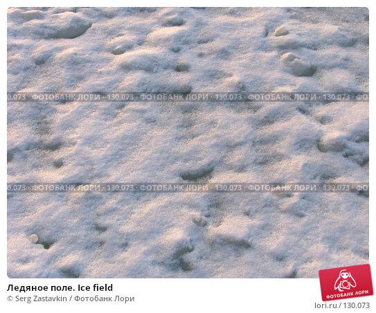 Купить «Ледяное поле. Ice field», фото № 130073, снято 29 ноября 2004 г. (c) Serg Zastavkin / Фотобанк Лори