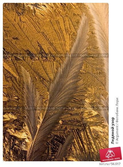 Купить «Ледяной узор», фото № 56017, снято 23 декабря 2005 г. (c) Argument / Фотобанк Лори