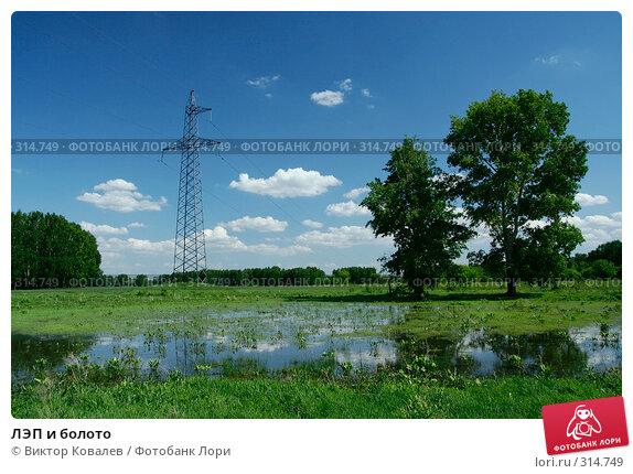 ЛЭП и болото, фото № 314749, снято 2 июня 2008 г. (c) Виктор Ковалев / Фотобанк Лори