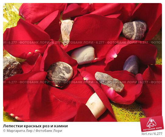 Лепестки красных роз и камни, фото № 6277, снято 11 июня 2006 г. (c) Маргарита Лир / Фотобанк Лори