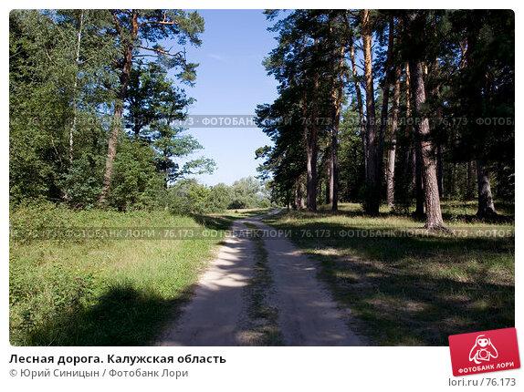Лесная дорога. Калужская область, фото № 76173, снято 11 августа 2007 г. (c) Юрий Синицын / Фотобанк Лори