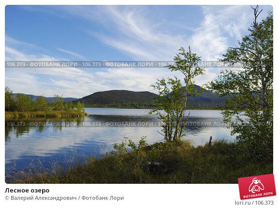 Лесное озеро, фото № 106373, снято 29 августа 2007 г. (c) Валерий Александрович / Фотобанк Лори