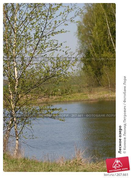 Купить «Лесное озеро», фото № 267661, снято 25 апреля 2008 г. (c) Коннов Леонид Петрович / Фотобанк Лори
