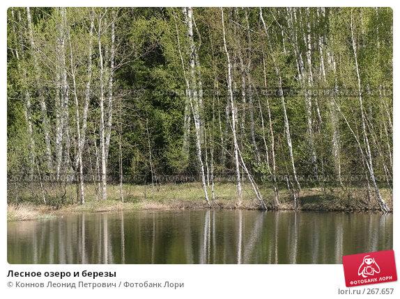 Купить «Лесное озеро и березы», фото № 267657, снято 25 апреля 2008 г. (c) Коннов Леонид Петрович / Фотобанк Лори