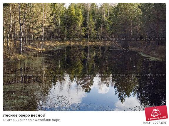 Лесное озеро весной, фото № 272601, снято 28 апреля 2008 г. (c) Игорь Соколов / Фотобанк Лори