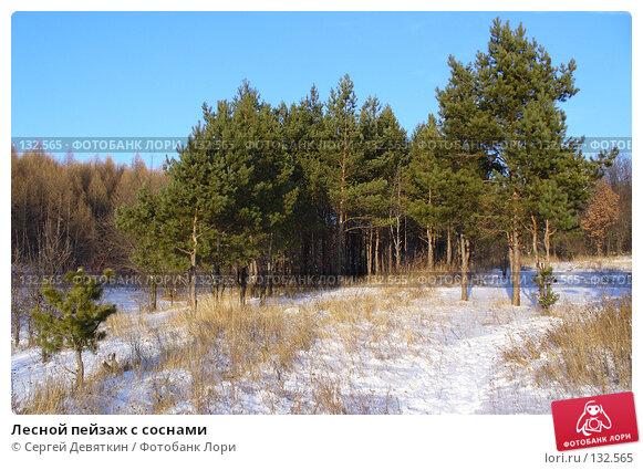 Лесной пейзаж с соснами, фото № 132565, снято 25 ноября 2007 г. (c) Сергей Девяткин / Фотобанк Лори