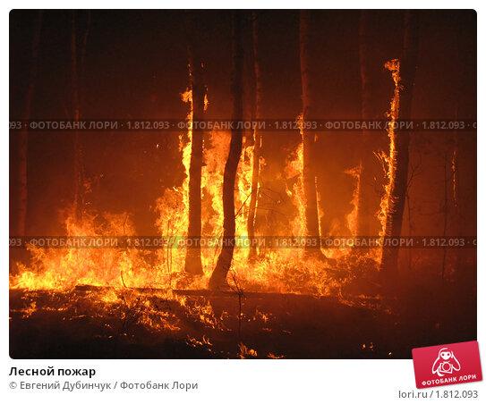 Купить «Лесной пожар», фото № 1812093, снято 1 июля 2010 г. (c) Евгений Дубинчук / Фотобанк Лори