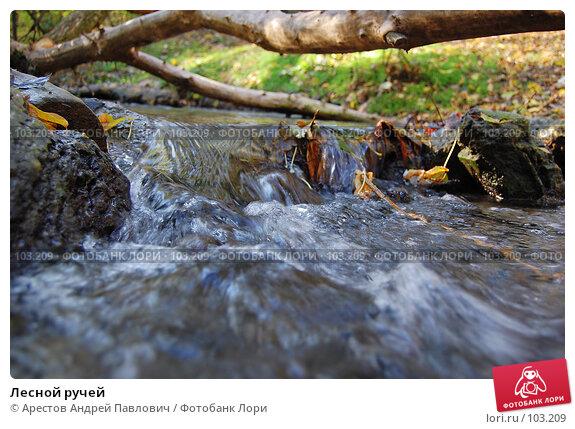 Лесной ручей, фото № 103209, снято 25 февраля 2017 г. (c) Арестов Андрей Павлович / Фотобанк Лори