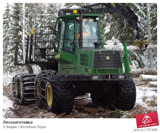Лесозаготовка, фото № 177045, снято 16 ноября 2007 г. (c) Вадим / Фотобанк Лори