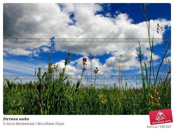 Летнее небо, фото № 195521, снято 17 июня 2007 г. (c) Алла Матвейчик / Фотобанк Лори