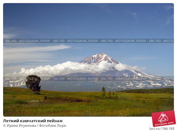 Летний камчатский пейзаж, фото № 186193, снято 31 июля 2005 г. (c) Ирина Игумнова / Фотобанк Лори