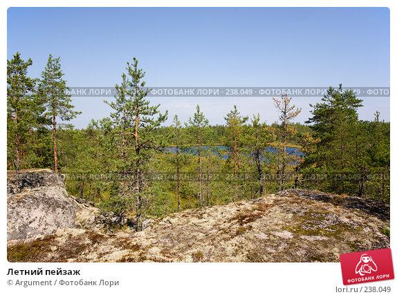 Летний пейзаж, фото № 238049, снято 11 августа 2007 г. (c) Argument / Фотобанк Лори