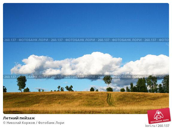 Летний пейзаж, фото № 260137, снято 16 июня 2007 г. (c) Николай Коржов / Фотобанк Лори