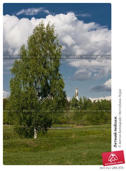 Летний пейзаж, фото № 289373, снято 17 мая 2008 г. (c) Антон Белицкий / Фотобанк Лори