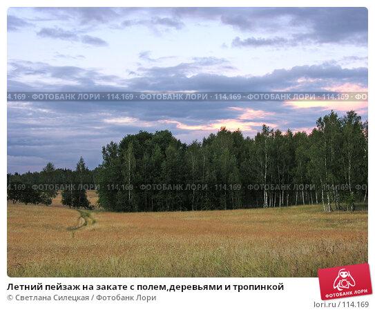 Летний пейзаж на закате с полем,деревьями и тропинкой, фото № 114169, снято 21 июля 2007 г. (c) Светлана Силецкая / Фотобанк Лори