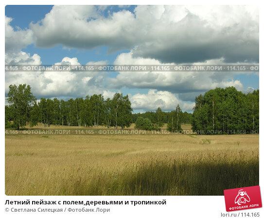 Купить «Летний пейзаж с полем,деревьями и тропинкой», фото № 114165, снято 21 июля 2007 г. (c) Светлана Силецкая / Фотобанк Лори